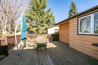Photo 30: 10565 26 Avenue in Edmonton: Zone 16 House for sale : MLS®# E4237049