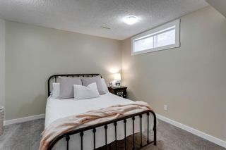 Photo 21: 266 Banister Drive: Okotoks Residential for sale : MLS®# A1070083