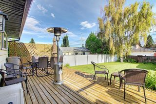 Photo 23: 155 HUNTFORD Road NE in Calgary: Huntington Hills Detached for sale : MLS®# A1016441