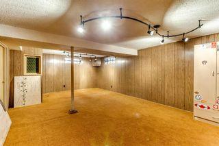 Photo 22: 8228 5 Street SW in Calgary: Kingsland Detached for sale : MLS®# A1124173