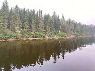 Photo 2: 57 Waterfront Road in Red Lake: Vacant Land for sale : MLS®# TB212255