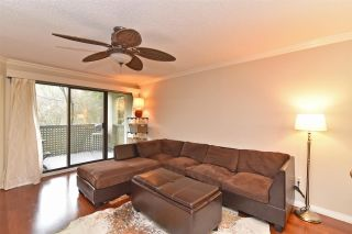 Photo 2: 205 1210 PACIFIC STREET in Coquitlam: North Coquitlam Condo for sale : MLS®# R2235055