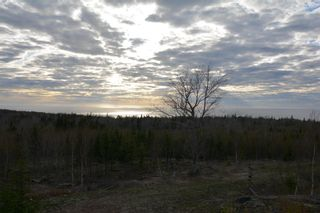 Photo 15: LOT Culloden Road in Culloden: 401-Digby County Residential for sale (Annapolis Valley)  : MLS®# 202111278