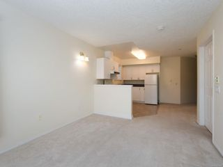 Photo 5: 302 1070 Southgate St in : Vi Fairfield West Condo for sale (Victoria)  : MLS®# 851621