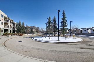 Photo 40: 302 69 Springborough Court SW in Calgary: Springbank Hill Apartment for sale : MLS®# A1085302