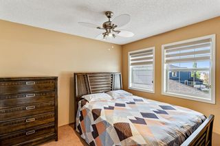 Photo 23: 40 Coral Reef Bay NE in Calgary: Coral Springs Detached for sale : MLS®# A1118339