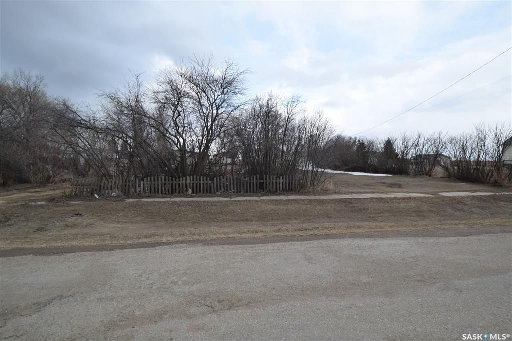 Main Photo: 216 Princess Street in Allan: Lot/Land for sale : MLS®# SK848676