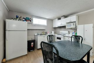 Photo 24: 10 Martha's Meadow Bay NE in Calgary: Martindale Detached for sale : MLS®# A1124430