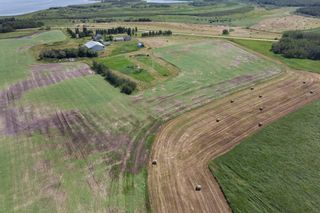 Photo 5: 51318 RANGE ROAD 210 A: Rural Strathcona County Rural Land/Vacant Lot for sale : MLS®# E4208934