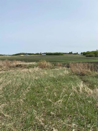 Photo 2: 57202 Hwy 44: Rural Sturgeon County Rural Land/Vacant Lot for sale : MLS®# E4226796