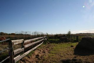 Photo 10: RR 220 And HWY 18: Rural Thorhild County House for sale : MLS®# E4227750