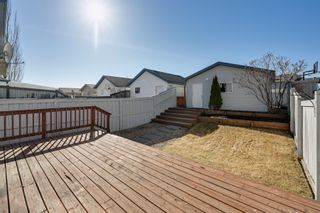 Photo 7: 20235 56 Ave NW: Edmonton House Duplex for sale : MLS®# E4238994