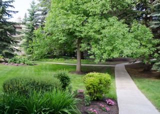 Photo 42: 52 Point Drive NW in Calgary: Point McKay Row/Townhouse for sale : MLS®# A1147727