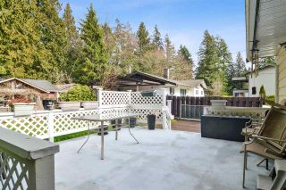 Photo 19: 19751 40A Avenue in Langley: Brookswood Langley House for sale : MLS®# R2542070