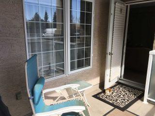 Photo 22: 111 612 111 Street SW in Edmonton: Zone 55 Condo for sale : MLS®# E4231181