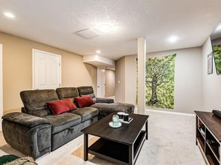 Photo 42: 158 Citadel Meadow Gardens NW in Calgary: Citadel Row/Townhouse for sale : MLS®# A1112669