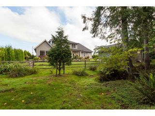 "Photo 36: 21806 44 Avenue in Langley: Murrayville House for sale in ""Murrayville"" : MLS®# R2491886"