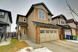 Photo 2: 356 SKYVIEW SHORES Manor NE in Calgary: Skyview Ranch Detached for sale : MLS®# C4277892