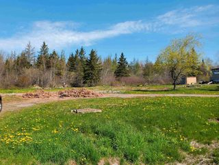 Photo 5: 1127 Hunter Road in West Wentworth: 103-Malagash, Wentworth Vacant Land for sale (Northern Region)  : MLS®# 202112124