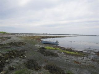 Photo 20: Pages Island in Port La Tour: 407-Shelburne County Vacant Land for sale (South Shore)  : MLS®# 202022571