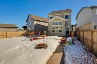 Photo 37: 64 NEW BRIGHTON Grove SE in Calgary: New Brighton Detached for sale : MLS®# C4233514