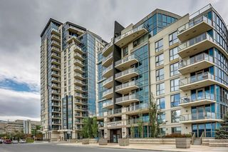 Photo 12: #909 325 3 ST SE in Calgary: Downtown East Village Condo for sale : MLS®# C4188161