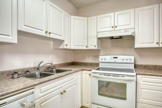 Photo 9: 3117 6818 Pinecliff Grove NE in Calgary: Pineridge Apartment for sale : MLS®# A1069420