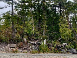 Photo 7: lot 50 Cedar Grove Pl in : PA Ucluelet Land for sale (Port Alberni)  : MLS®# 876745