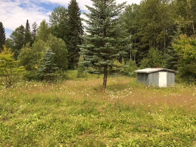 Photo 3: Photos: 1958 W SALES Road in Quesnel: Red Bluff/Dragon Lake Land for sale (Quesnel (Zone 28))  : MLS®# R2394023