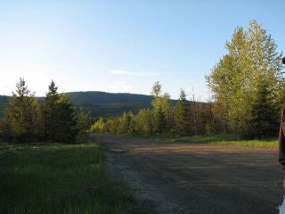 Photo 5: SW 1/4 DL 1680 ROAD 2A FSR in No City Value: Out of Town Land for sale : MLS®# R2603759