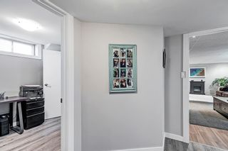 Photo 24: 7 Belleville Avenue: Spruce Grove House for sale : MLS®# E4249541