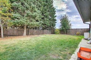 Photo 36: 1351 Idaho Street: Carstairs Detached for sale : MLS®# A1040858