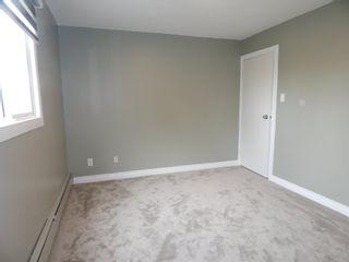 Photo 31:  in Edmonton: Zone 29 Condo for sale : MLS®# E4248069