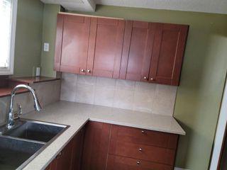 Photo 5: 4816 60 Street NE in Calgary: Temple Semi Detached for sale : MLS®# A1136864
