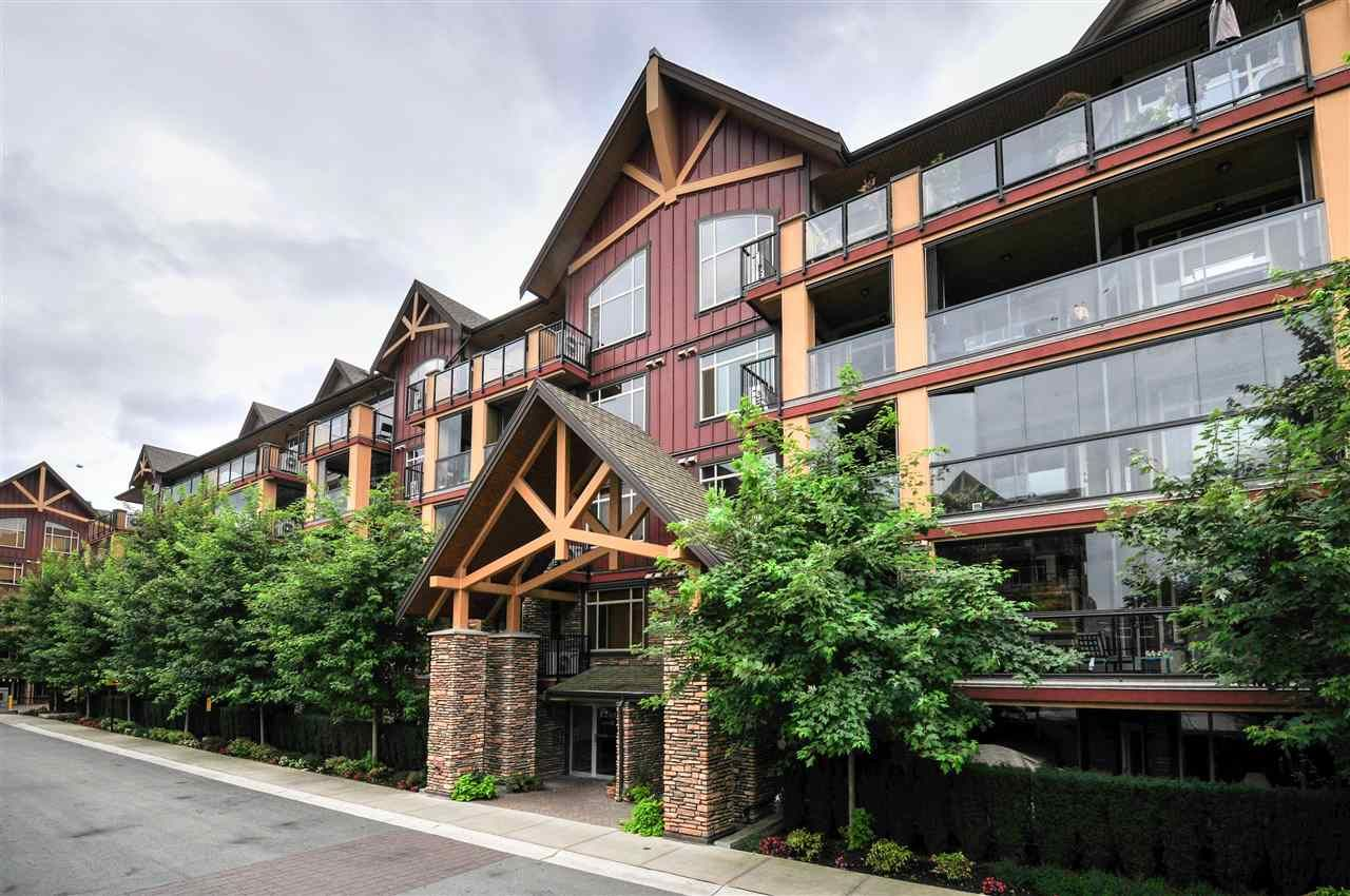 "Main Photo: 229 8288 207A Street in Langley: Willoughby Heights Condo for sale in ""Yorkson Creek"" : MLS®# R2103080"