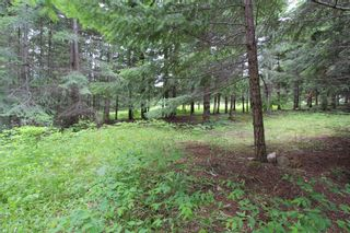 Photo 5: 108 Airstrip Road in Anglemont: North Shuswap Land Only for sale (Shuswap)  : MLS®# 10067018
