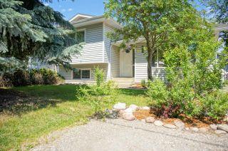 Photo 44: 1018 14TH STREET in Invermere: House for sale : MLS®# 2459371