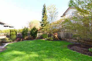 Photo 19: 15532 37A AVENUE in Surrey: Morgan Creek House for sale (South Surrey White Rock)  : MLS®# R2050023