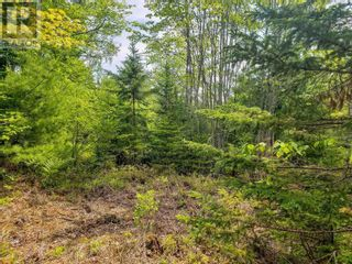 Photo 21: Lot 101 Dorey Mills Road in Clearland: Vacant Land for sale : MLS®# 202119645