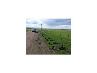 Photo 3: 380070 120 Street E: Rural Foothills M.D. Land for sale : MLS®# C3643386