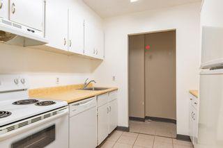 Photo 2:  in Edmonton: Zone 02 Condo for sale : MLS®# E4246424