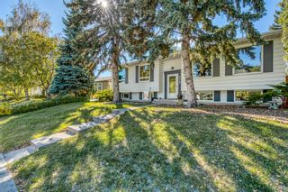 Photo 2: 10524 Waneta Crescent SE in Calgary: Willow Park Detached for sale : MLS®# A1149291
