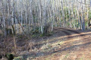 Photo 45: 4325 York Rd in : CR Campbell River South House for sale (Campbell River)  : MLS®# 867428