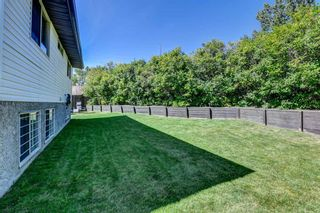 Photo 20: 19 Ogmoor Place SE in Calgary: Ogden Detached for sale : MLS®# A1028086