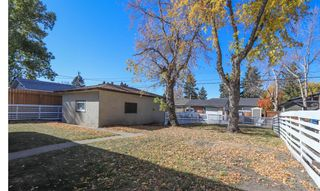 Photo 26: 2427 47 Street SE in Calgary: Forest Lawn Detached for sale : MLS®# A1150911