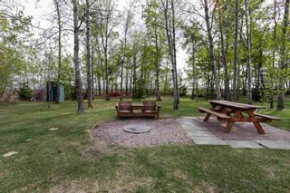 Photo 43: 57101 RGE RD 231: Rural Sturgeon County House for sale : MLS®# E4245858