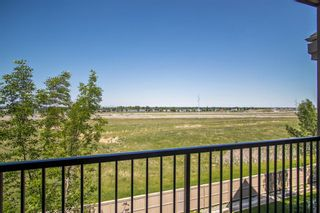 Photo 22: 325 52 Cranfield Link SE in Calgary: Cranston Apartment for sale : MLS®# A1123633