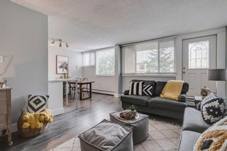Photo 4: 212 7007 4A Street SW in Calgary: Kingsland Apartment for sale : MLS®# A1112502
