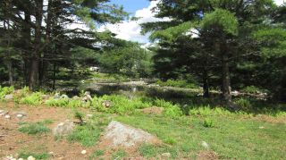 Photo 7: 7 McGillis Island Road in Middle Ohio: 407-Shelburne County Vacant Land for sale (South Shore)  : MLS®# 202016488