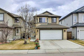 Photo 39: 9519 208 Street in Edmonton: Zone 58 House for sale : MLS®# E4241415